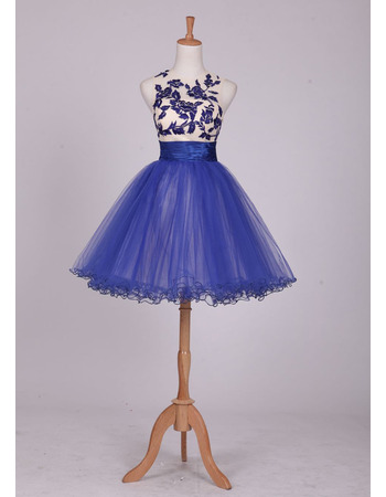Fitted Sleeveless Short Organza Embroidery Homecoming/ Party Dress